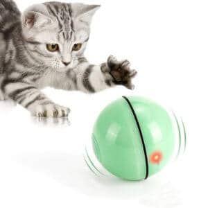 WWVVPET Interactive Cat Ball with LED Light