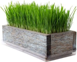 Handy Pantry Reclaimed Barnwood Style Planter