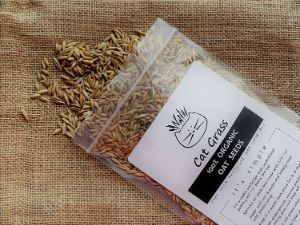Perfected-Brand Simple Cat Oat Grass-min