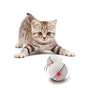 Yofun Interactive Automatic Spinning Cat Toy