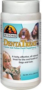 Wysong DentaTreat