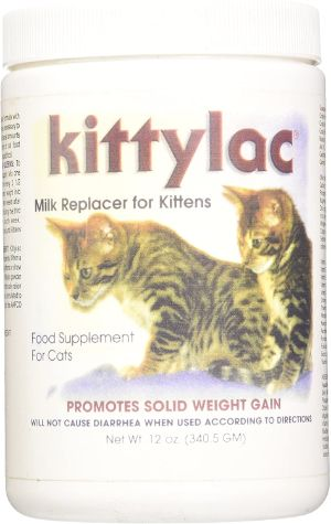 Kenic Kittylac Milk Replacer for Kittens