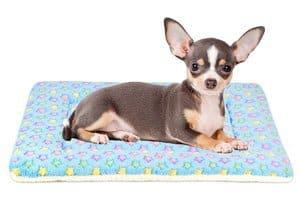Mora Pets Ultra Soft Pet Bed