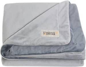 Friends Forever Deluxe Pet Blanket