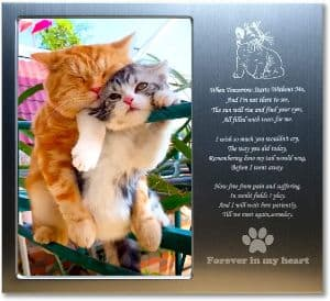 JOEZITON Pet Memorial Gift Personalized Picture Frame