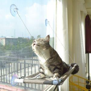 PEFUNY Cat Window Perch Cat Hammock Window Seat