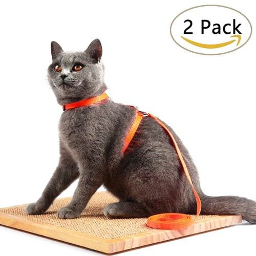 Avolare Cat Harness
