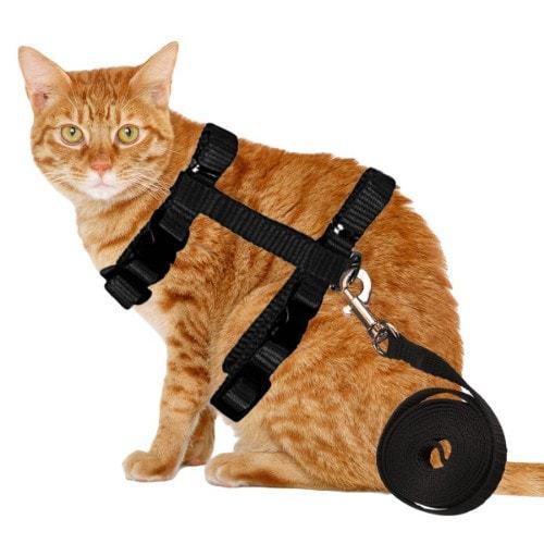 MR.Jiang Adjustabl Cat Kitten Leash Harness set