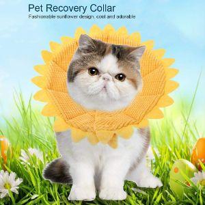 Pssopp Pet Recovery E-Collar