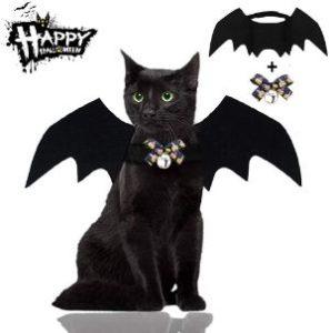 Malier Bat Cat Costume
