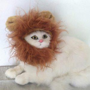 LCFUN Lion Mane Costume for Cat