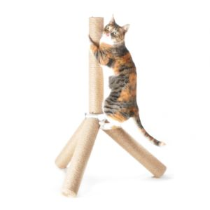 4 Claws Scratching Post
