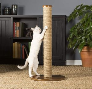 Prevue Kitty Pet Products Power Paws Post