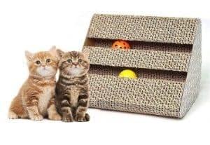 Old Tjikko Cat Scratch Pad