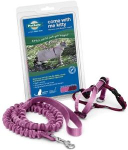 PetSafe come with me bungee leash
