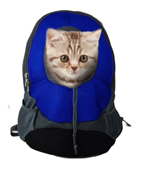 A Cup of Tea Pet Carrier Backpack