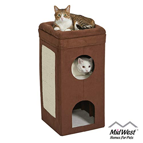 Midwest Curious Cat Cube