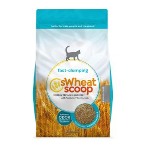 sWheat Scoop Natural Fast-Clumping Wheat Cat Litter-min