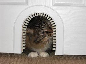 Cathole Pet Door