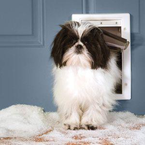 PetSafe Extreme Weather Cat Door