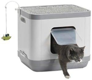 moderna cat concept litter box