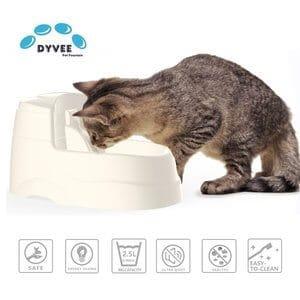 Dyvee Cat Drinking Fountain