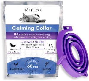 Kitty Co Calming Collar