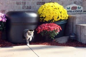 Kitty Tube The Outdoor Insulated Cat House - Feral Option